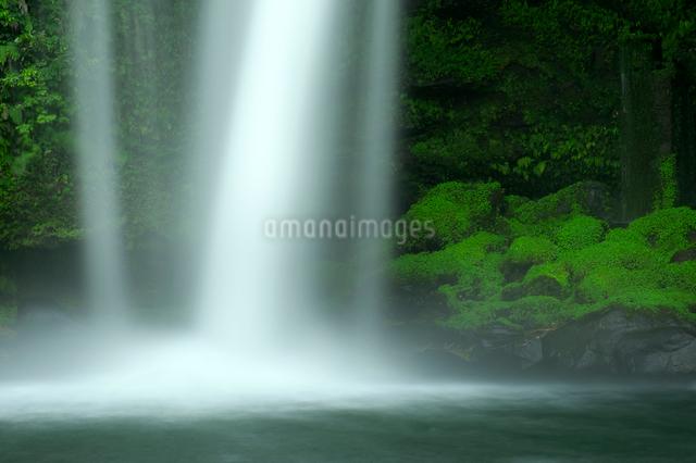 慈恩の滝 の写真素材 [FYI01610926]
