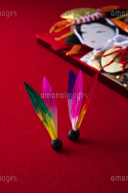 羽根つきの写真素材 [FYI01610985]