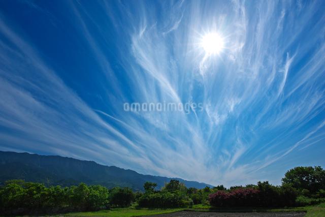 筋雲と太陽の写真素材 [FYI01611064]