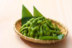 枝豆の写真素材 [FYI01611166]