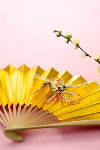 鶴の水引と扇子の写真素材 [FYI01611298]