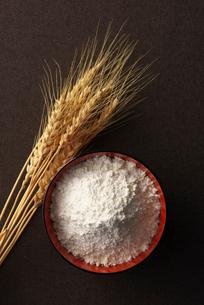 小麦の写真素材 [FYI01611302]