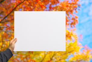 メッセージボードを持つ男性の写真素材 [FYI01611365]