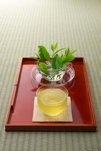 冷茶と茶葉の写真素材 [FYI01611433]