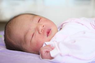 生後二日目の新生児の写真素材 [FYI01611439]