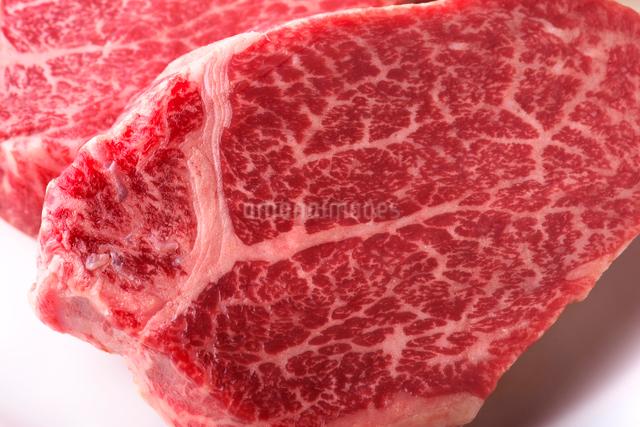 ヒレ肉の写真素材 [FYI01611466]