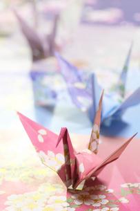 折り鶴の写真素材 [FYI01611491]