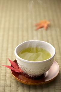 日本茶の写真素材 [FYI01611511]