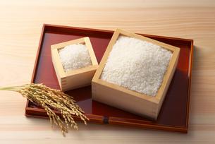 米と稲穂の写真素材 [FYI01611572]