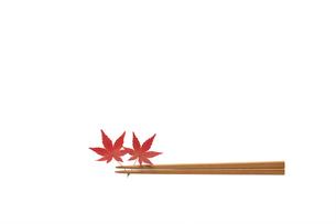 モミジと箸の写真素材 [FYI01611701]