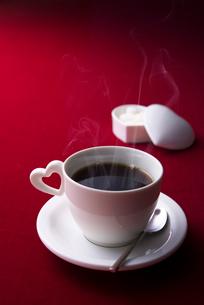 コーヒーの写真素材 [FYI01611934]