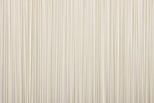 素麺の写真素材 [FYI01612016]