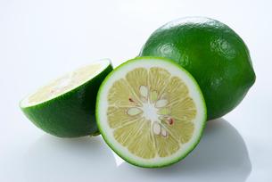 緑のレモンの写真素材 [FYI01612229]