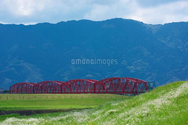 耳納連山を背景に筑後川橋の写真素材 [FYI01612270]