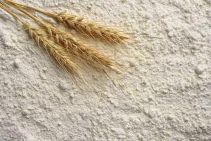 小麦と小麦粉の写真素材 [FYI01612534]