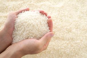 米を持った男性の手の写真素材 [FYI01612607]