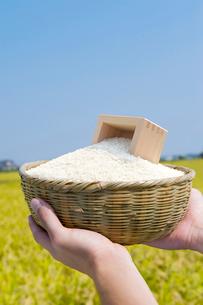 笊に入った米の写真素材 [FYI01612678]