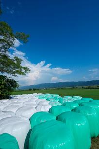 牧草ロールと耳納連山の写真素材 [FYI01612686]