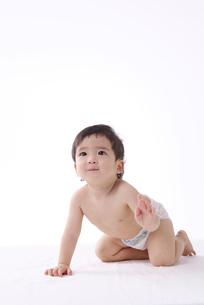 赤ちゃんの写真素材 [FYI01612708]
