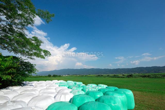 牧草ロールと耳納連山の写真素材 [FYI01612786]