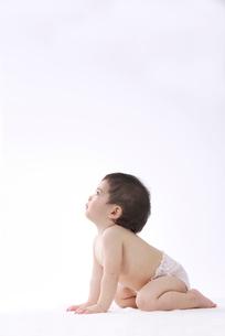赤ちゃんの写真素材 [FYI01612799]