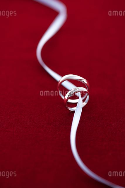 結婚指輪とリボンの写真素材 [FYI01612853]