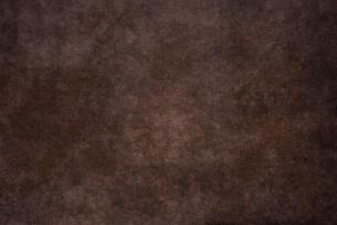和紙の写真素材 [FYI01613031]