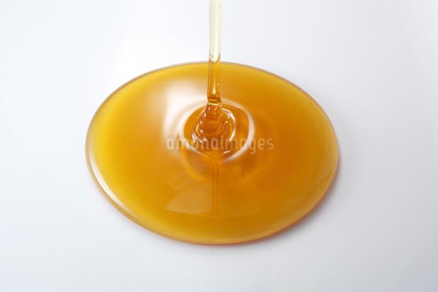 蜂蜜の写真素材 [FYI01613238]