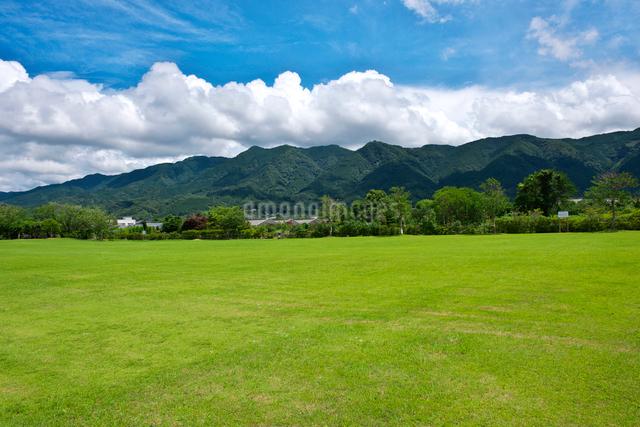 久留米ふれあい農業公園の写真素材 [FYI01613278]