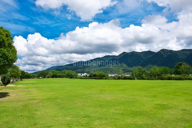 久留米ふれあい農業公園の写真素材 [FYI01613383]