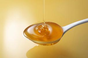 蜂蜜の写真素材 [FYI01613434]