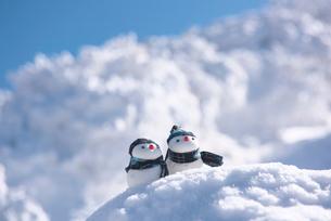 雪だるまの写真素材 [FYI01613531]