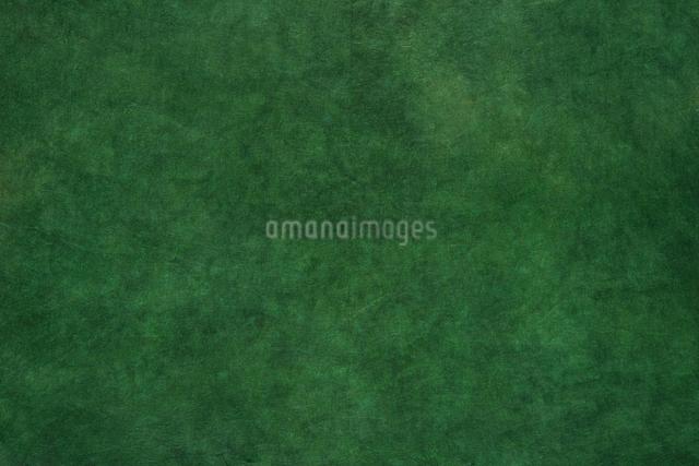 和紙の写真素材 [FYI01613575]