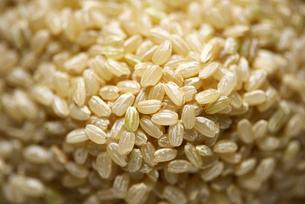 玄米の写真素材 [FYI01613638]