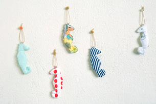 壁にかかっているタツノオトシゴのストラップいろいろの写真素材 [FYI01613801]