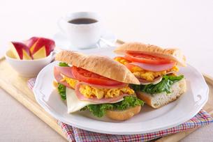 サンドイッチの写真素材 [FYI01613811]