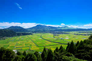 阿蘇 城山展望所より阿蘇五岳を望むの写真素材 [FYI01613819]
