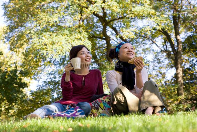 公園でピクニックをする日本人女性の写真素材 [FYI01614066]