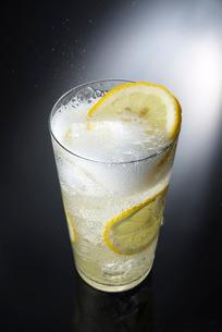レモンサワーの写真素材 [FYI01614343]