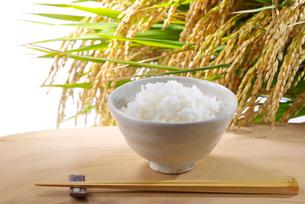 ご飯と稲の写真素材 [FYI01614483]