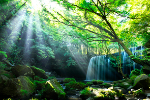 鍋ヶ滝の写真素材 [FYI01614714]