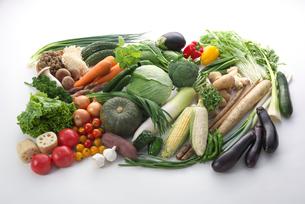 野菜集合の写真素材 [FYI01615138]