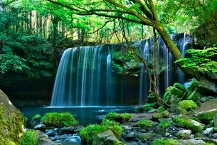 鍋ヶ滝の写真素材 [FYI01615203]