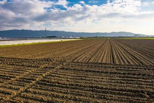 畑の写真素材 [FYI01615317]
