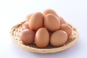 卵の写真素材 [FYI01615419]