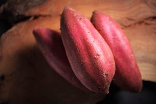 サツマイモの写真素材 [FYI01615479]
