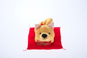 犬の置物の写真素材 [FYI01615563]
