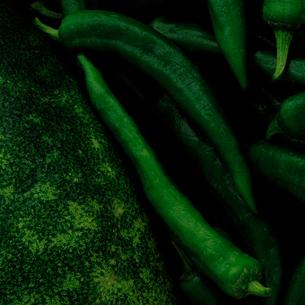 瓜と青とうがらしの写真素材 [FYI01615793]