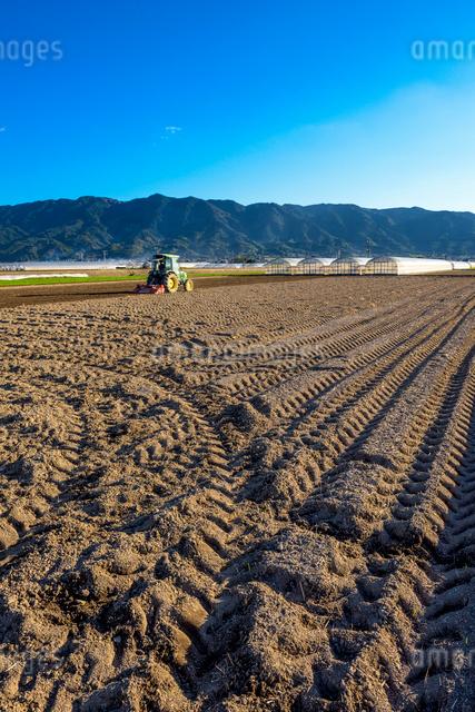 耳納連山を背景に畑を耕すトラクターの写真素材 [FYI01615863]