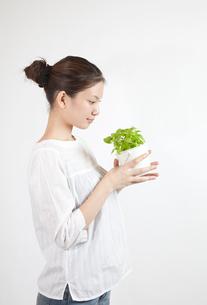 ハーブの鉢植えを愛でる女性の写真素材 [FYI01616115]